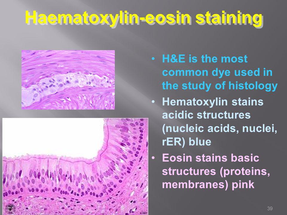 hematoxylin and eosin staining pdf