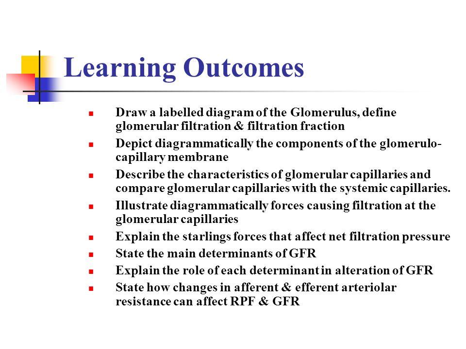 Glomerular Filtration Ppt Video Online Download