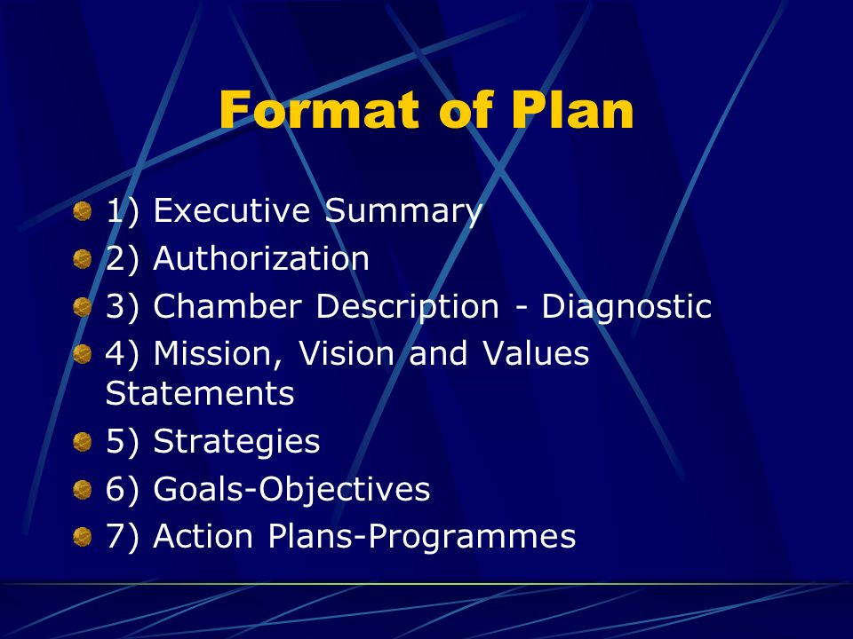 Format of Plan 1) Executive Summary 2) Authorization