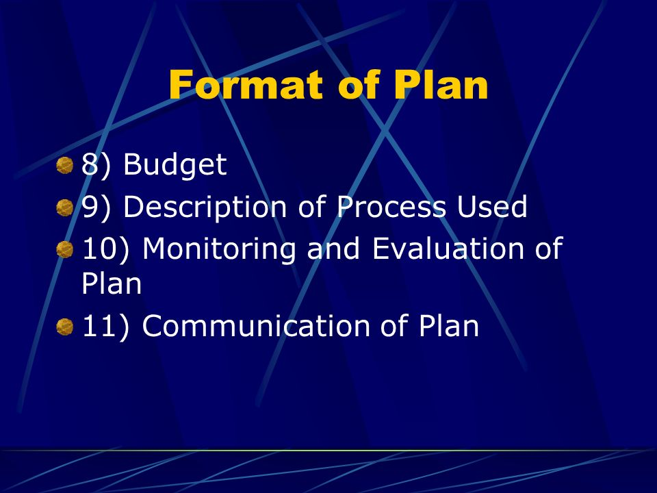 Format of Plan 8) Budget 9) Description of Process Used