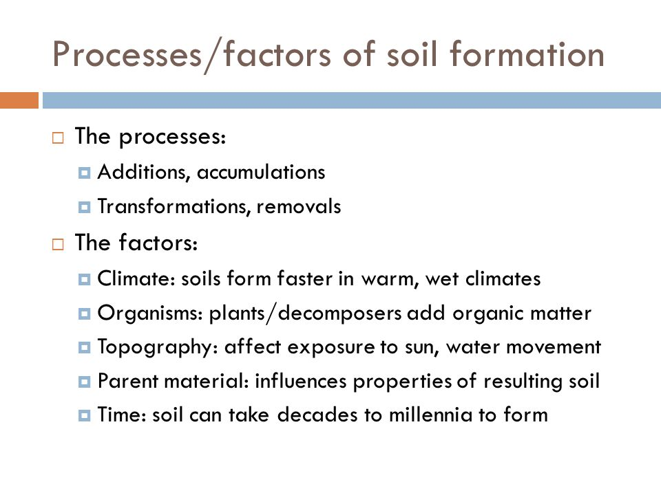 relationship between climate and soil formation