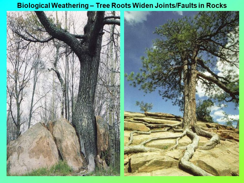 Weathering And The Formation Of Sedimentary Rocks Ppt