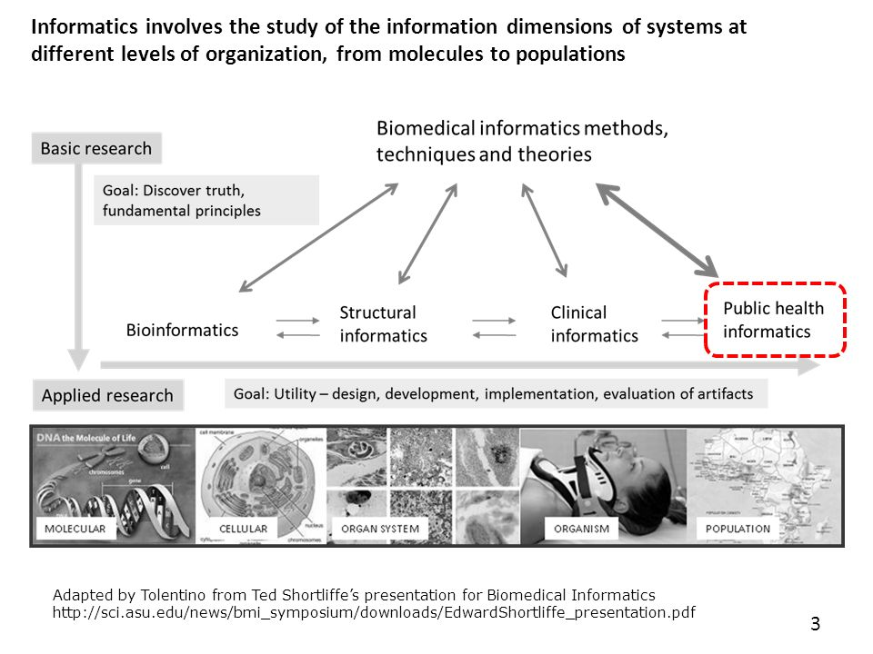 dimensions of information systems