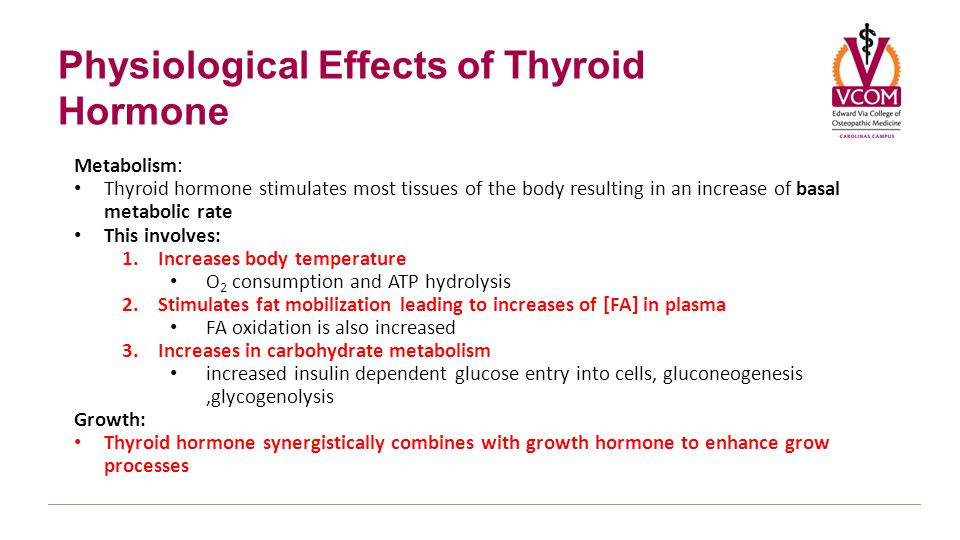 Fa biosynthesis of thyroid – Grand Essay Competition