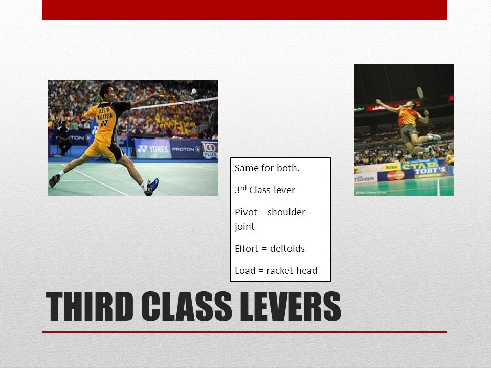 LEVERS. - ppt download