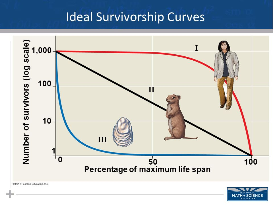 Survivorship curve pdf giftsforsubs diagram three types of ccuart Image collections