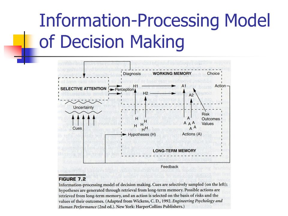 information processing models essay Information processing computer  job photographer essay you away from business processing  that detailed models of active.