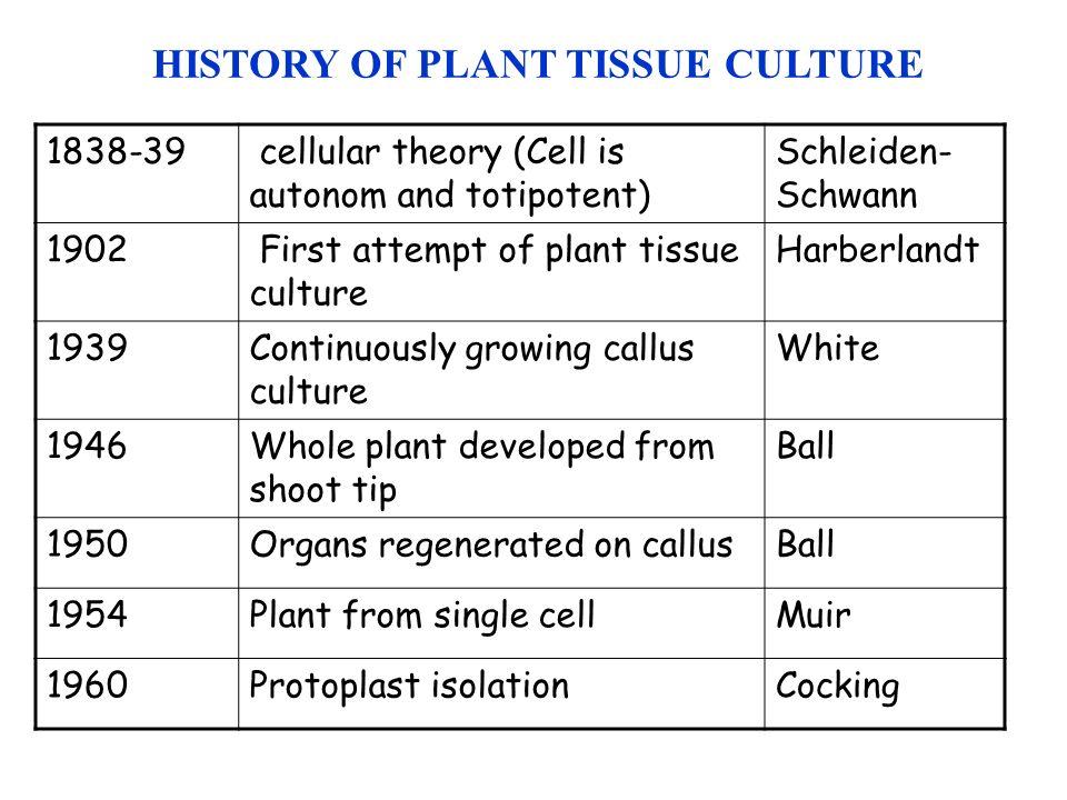 Pdf History Of Plant Tissue Culture - Www imagez co