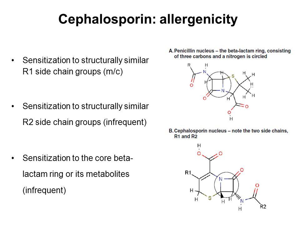 Cephalosporin: allergenicity