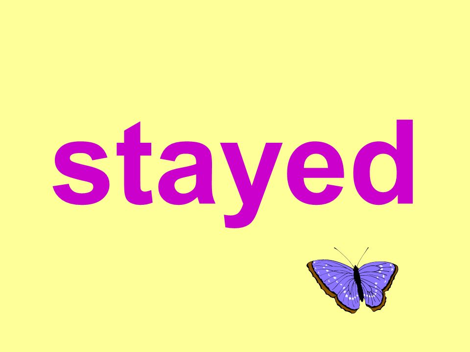 stayed