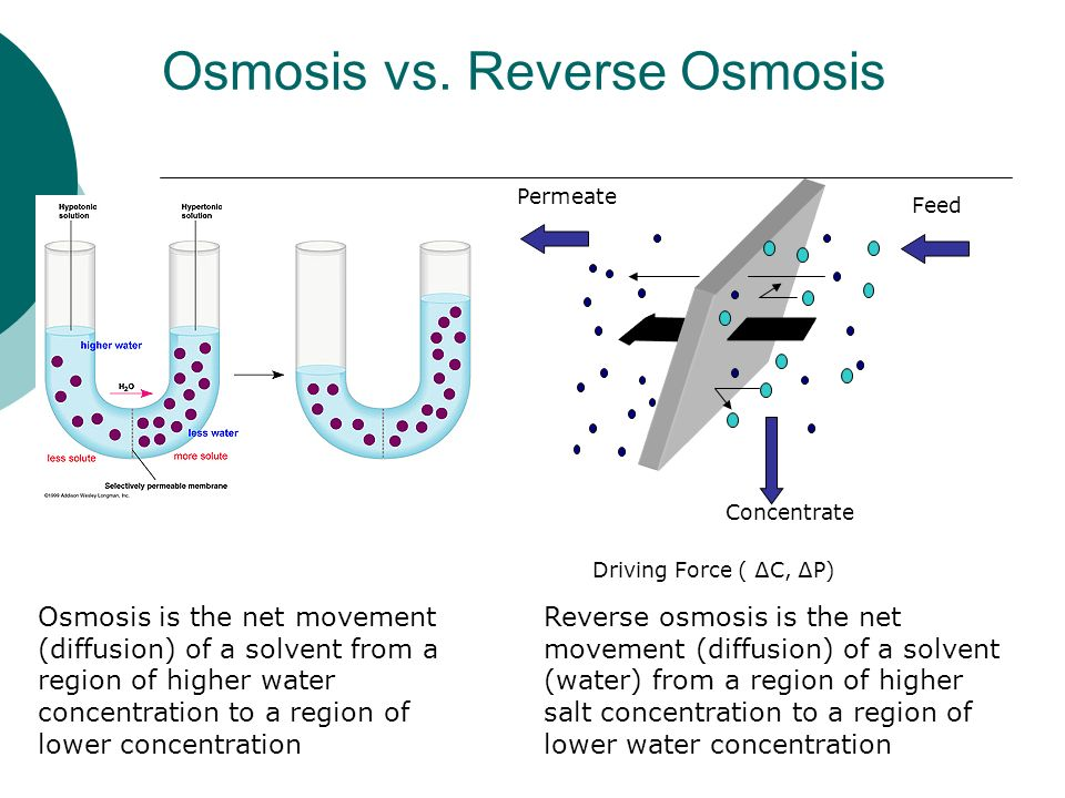 Image Result For Reverse Osmosis Concentration