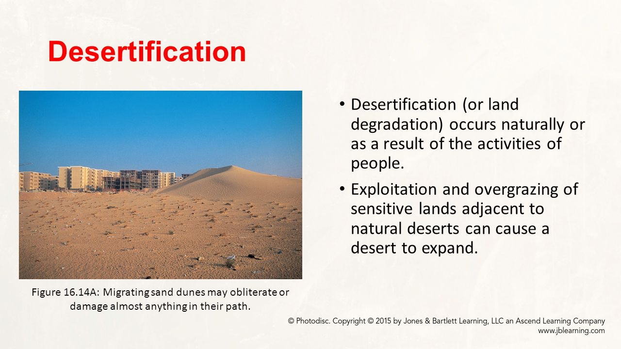 The major causes of desertification of the earth