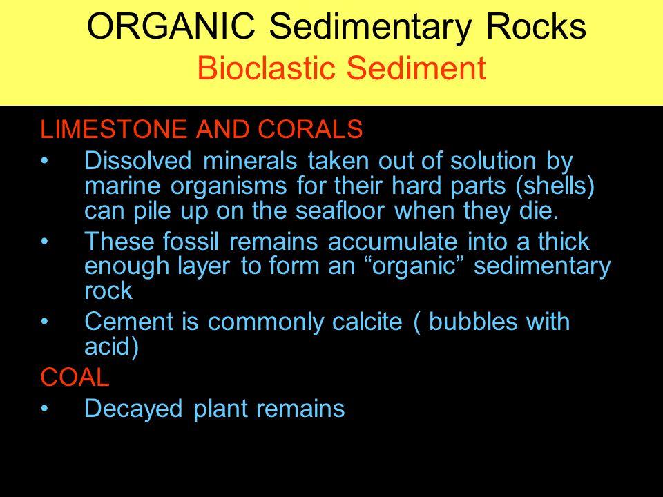 SEDIMENTARY ROCKS. - ppt video online download