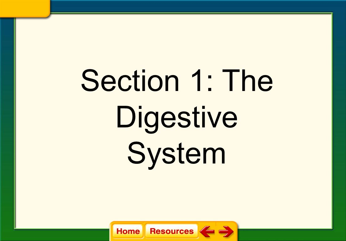 endocrine system section 1 answer key