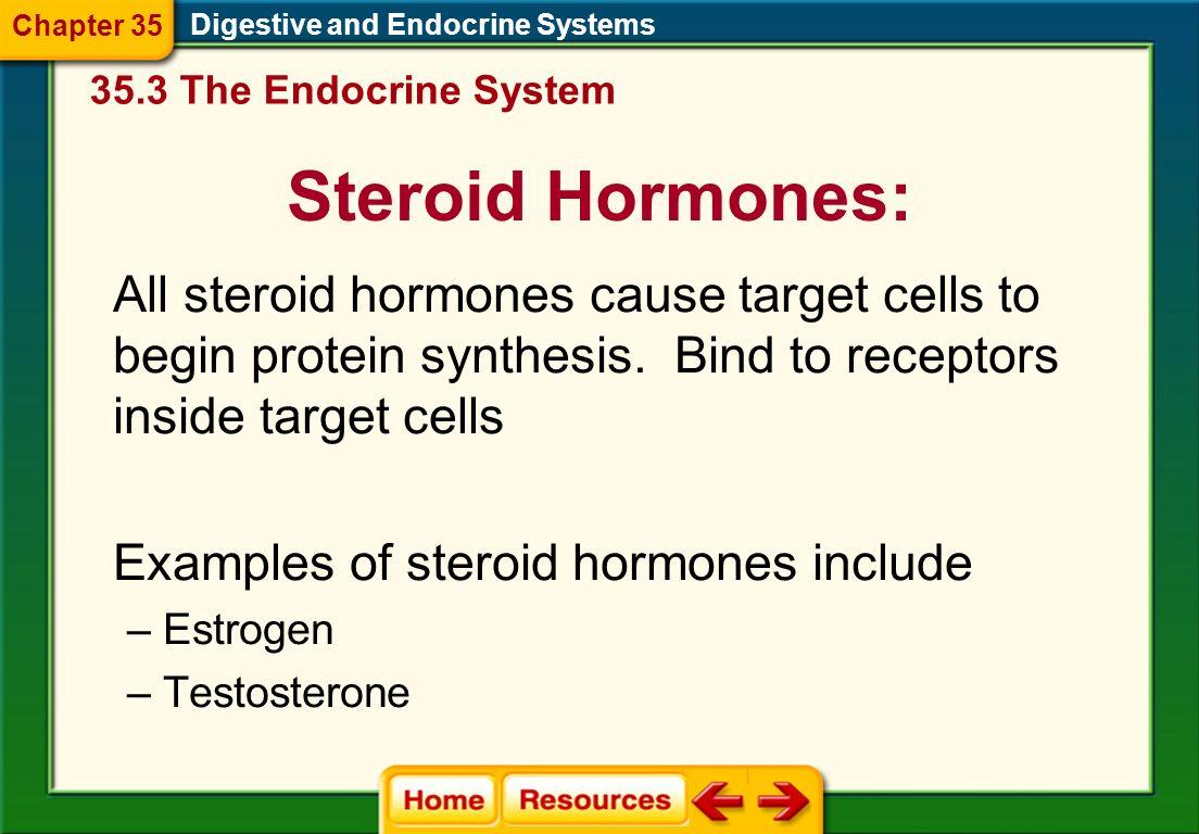 Endocrine ...