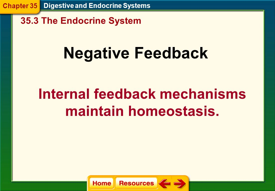 how the nervous system maintain homeostasis Nervous system maintain homeostasis - see more about nervous system maintain homeostasis, autonomic nervous system maintain homeostasis, endocrine and nervous system.