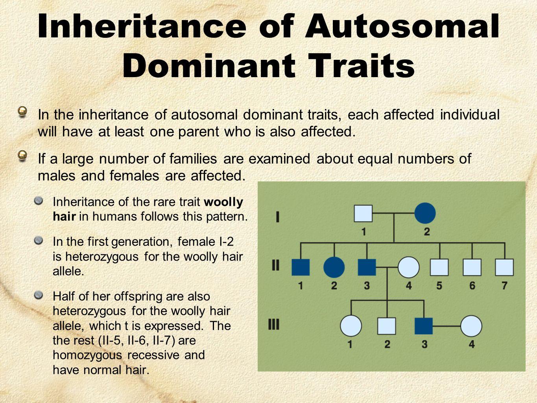 Genes & Inheritance Series: Set 4 - ppt video online download