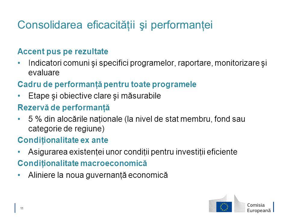 Consolidarea eficacităţii şi performanţei