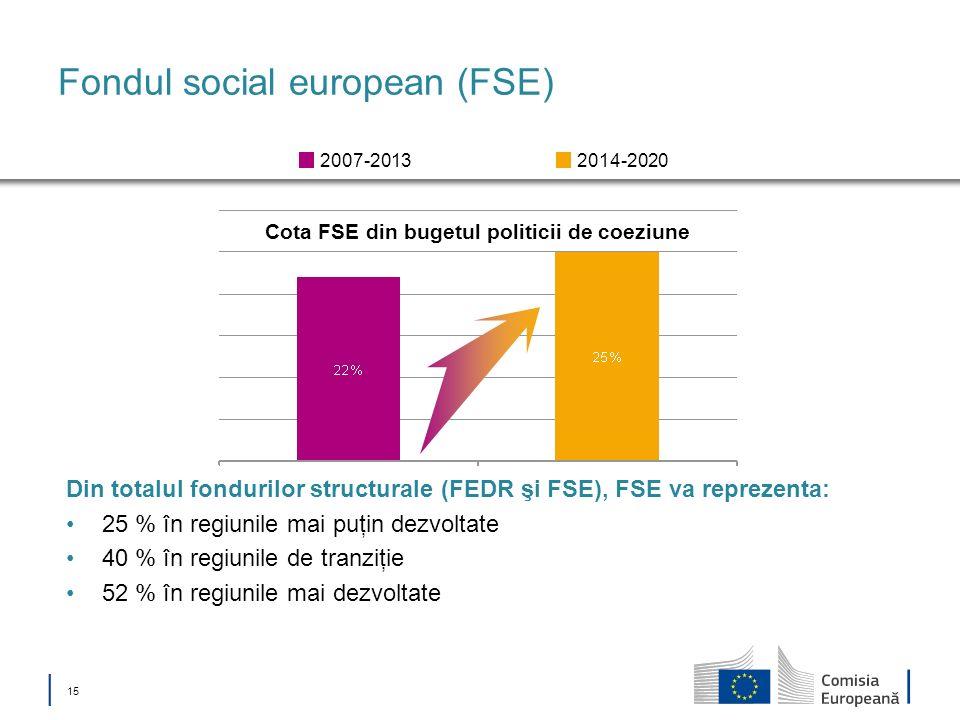 Fondul social european (FSE)