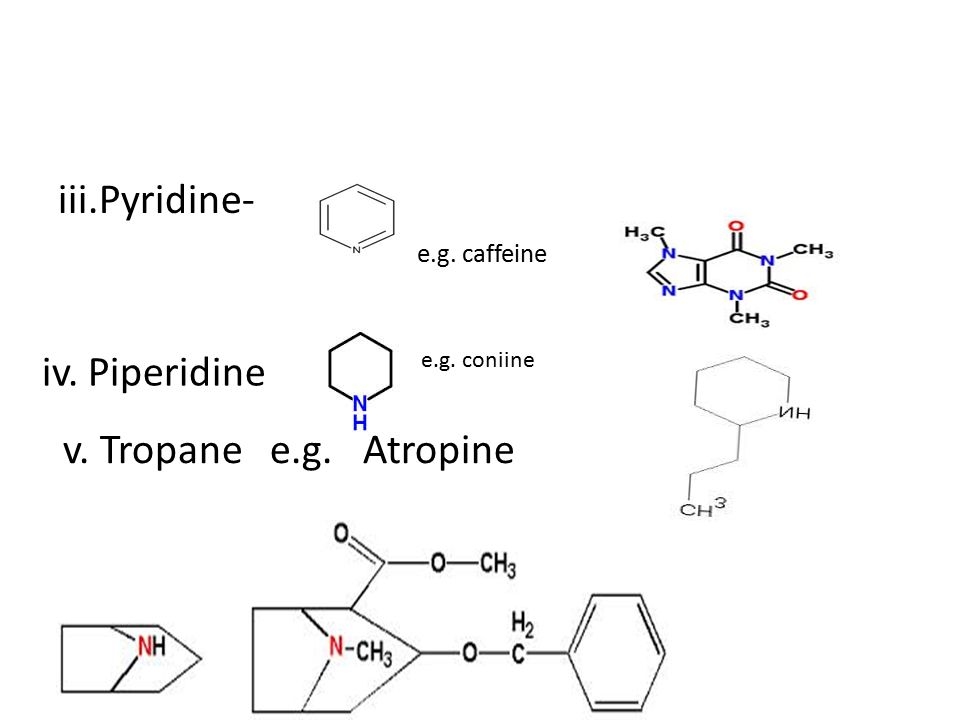 biosynthesis of tropane alkaloids pdf
