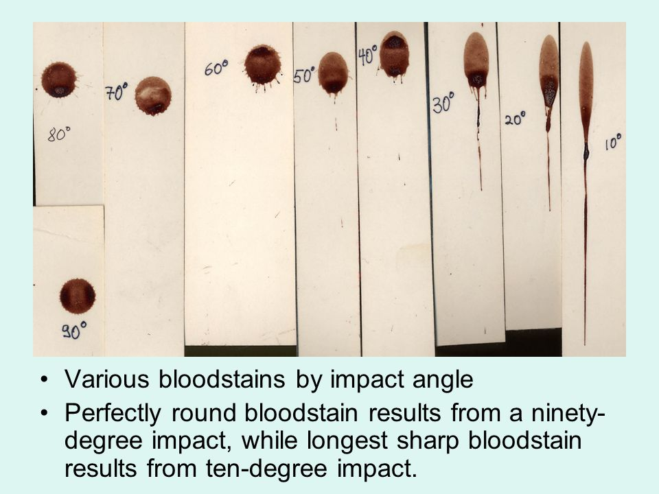 Various bloodstains by impact angle