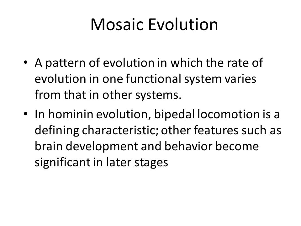 evolution of bipedal locomotion Abstract we review the evolution of human bipedal locomotion with a particular emphasis on the evolution of the foot we begin in the early twentieth century and focus particularly on hypotheses of an ape-like ancestor for humans and human bipedal locomotion put forward by a succession of gregory, keith, morton and schultz.