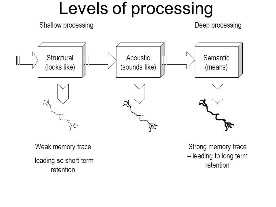 the levels of processing and memory 1 Craik & lockharts levels of processing the levels of processing model of memory (craik and lockhart, 1972) was put forward partly as a result of the criticism leveled at the multi-store model application of the levels of processing model in real life.