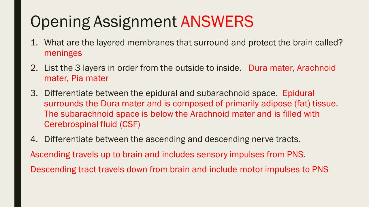 assignment 1 answers