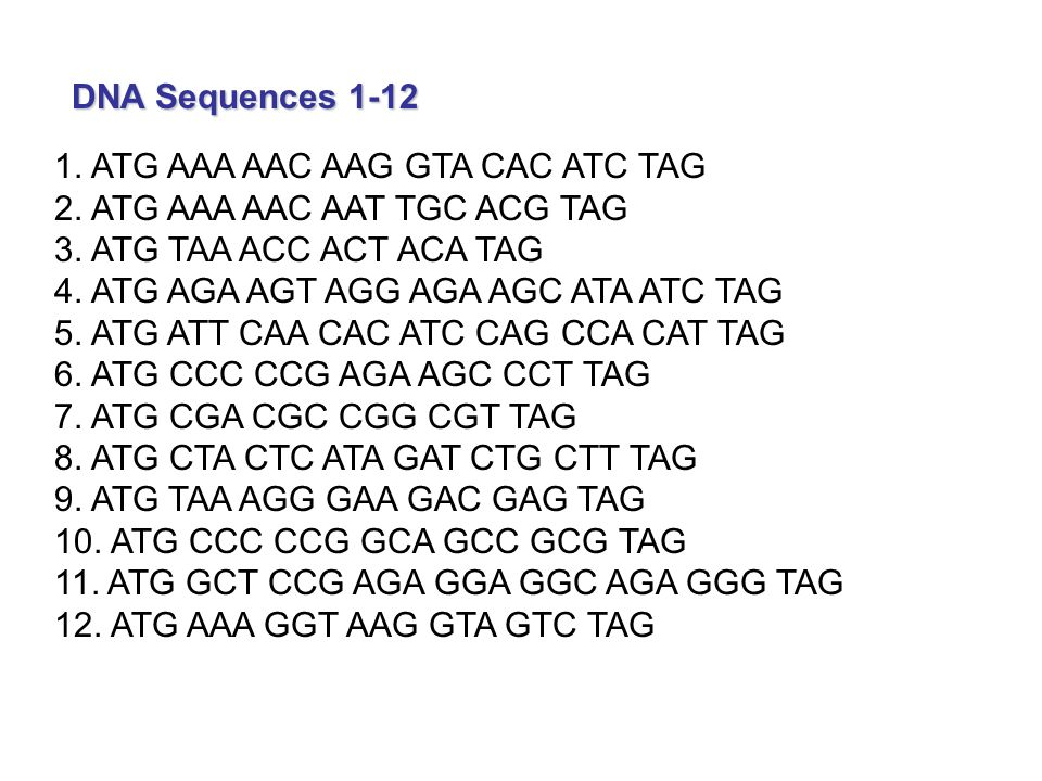 complimentary strand to cgt ctc ttc gga cac Complete the dna molecule by writinga complementary strand codingstrand: cgt ctc ttc gga cac complementary strand: 2 .