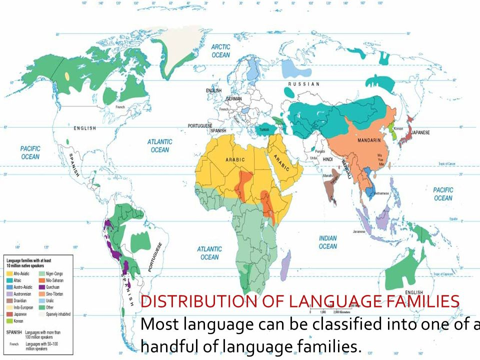 LANGUAGE FAMILY TREE Language Families With At Least Million - Language family map