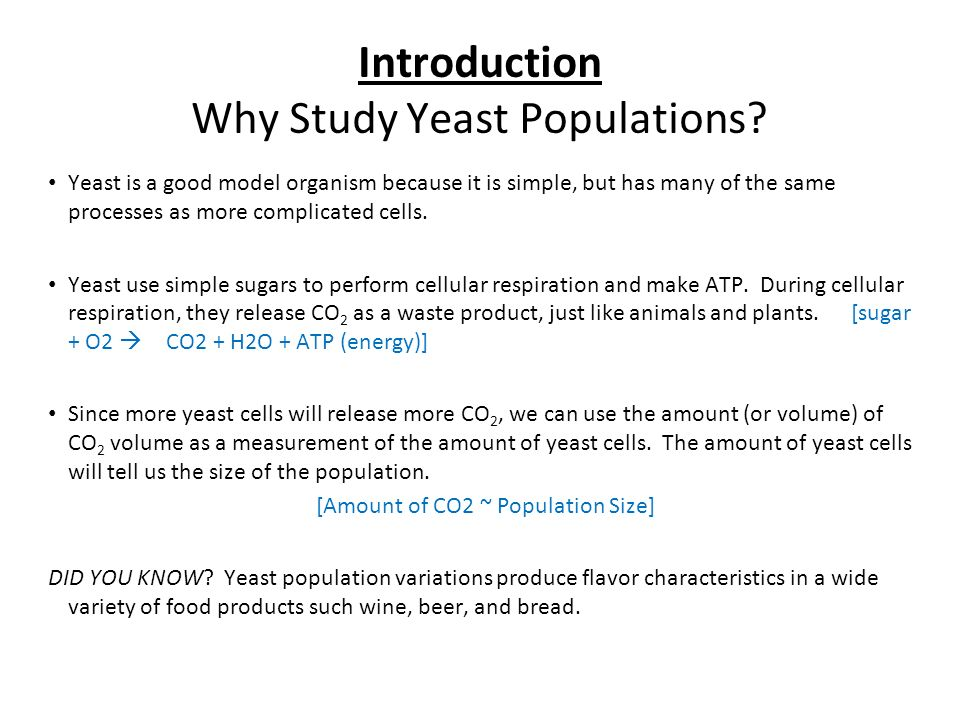 yeast population lab Read and download yeast population growth lab answers free ebooks in pdf format - 1st grade lined writing paper 1998 1200 sportster anniversary edition 1999 ford.