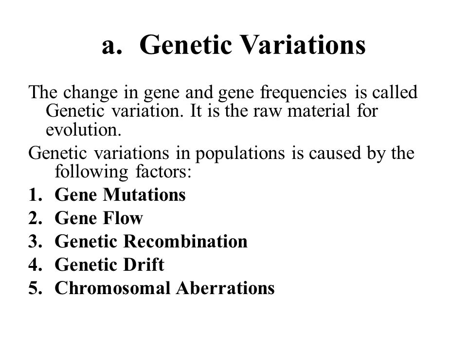 genetic variation is the raw material for evolution essay Basing their thinking on what we observe of mutations and their net effect (genetic burden), creationists use mutations to help explain the existence of disease, genetic defects, and other examples of negative variation within species.