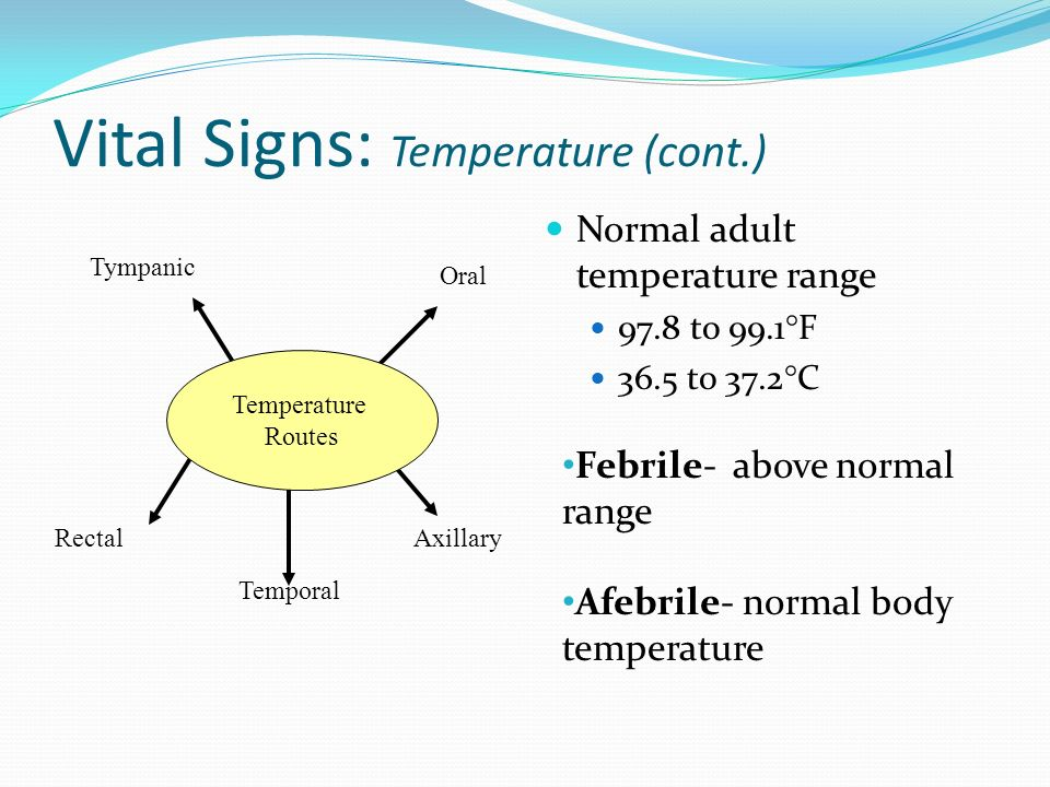 body Normal temperature adult