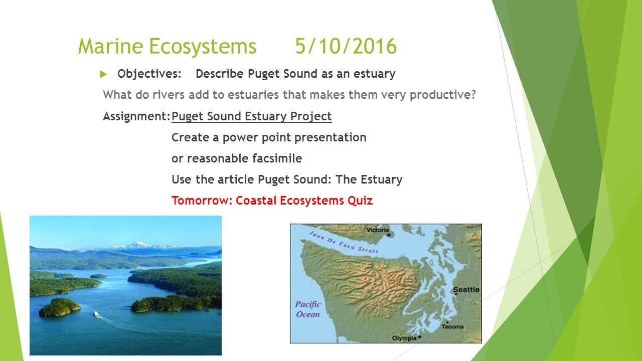 marine ecosystems Marine ecosystems and society the world-class academic program in marine ecosystems and society (mes) is interdisciplinary, broadly representing the functional and cultural intersection between humans and the sea.