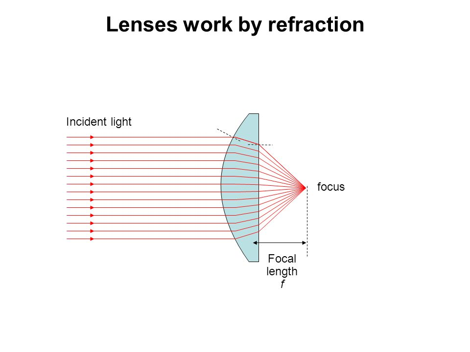introduction to light microscopy   ppt video online download