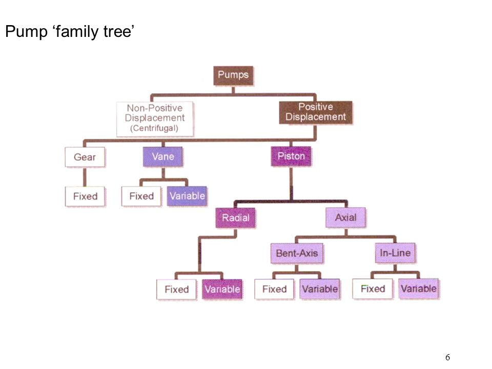 Pump 'family tree'