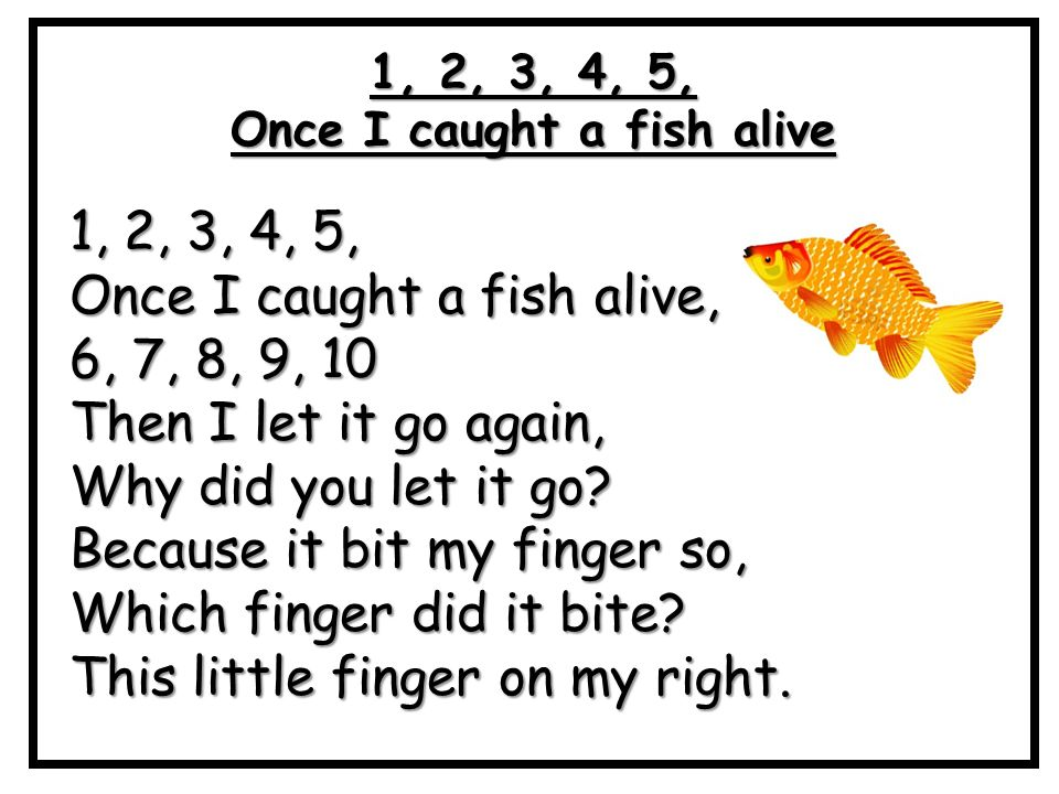 Lyric little fish lyrics little fish little fish for Little fish song