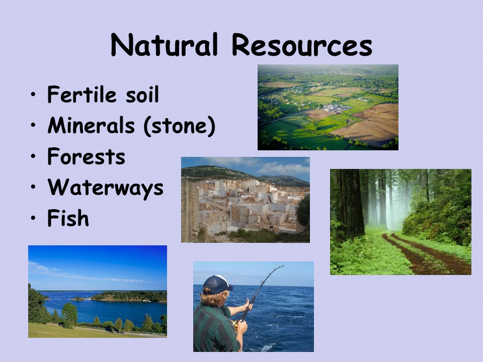 New York Natural Resources Minerals