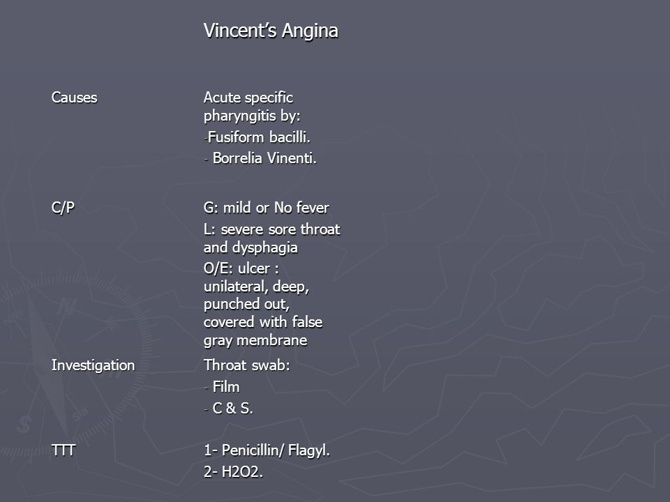 Vincent's Angina Causes Acute specific pharyngitis by:
