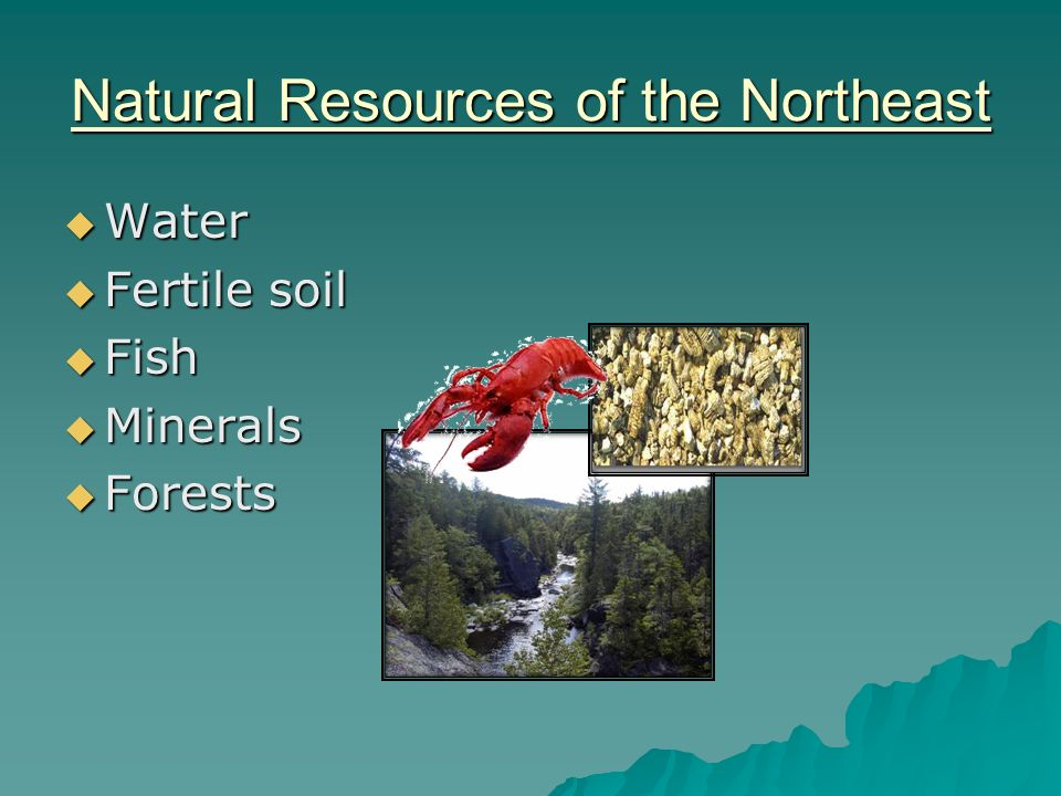 Rhode Island Major Natural Resources