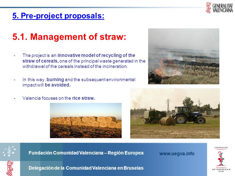 5. Pre-project proposals: 5.1. Management of straw:
