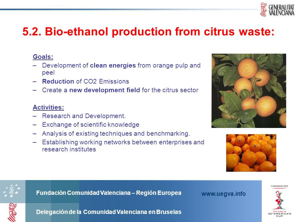 5.2. Bio-ethanol production from citrus waste:
