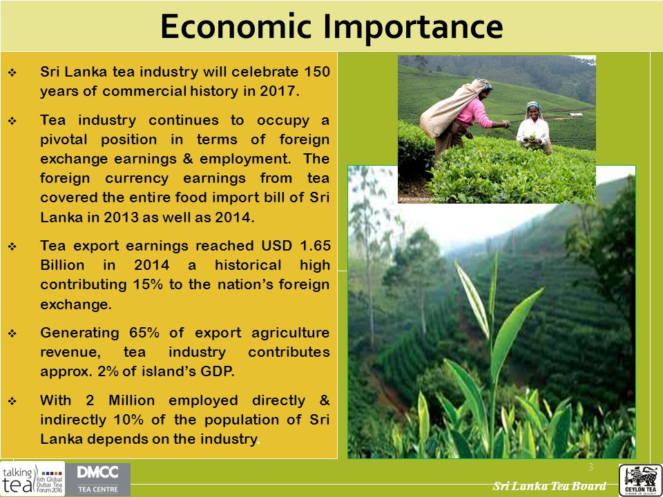 sri lanka tea industry analysis The industry analysis reveals that the intensity of competition in the global tea  industry is very high moreover, sri lanka has many unfavorable.