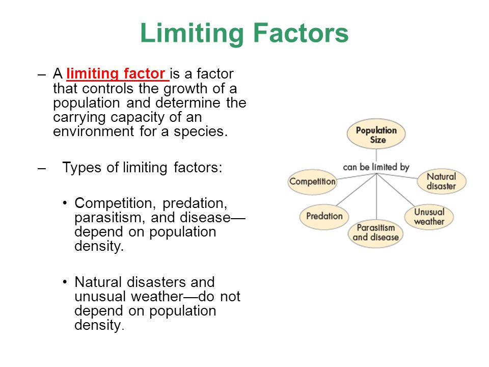 Limiting factors worksheet 5th grade