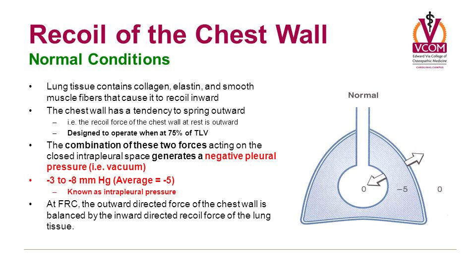Pulmonology of obstructive and restrictive disease ppt for Pull it off definition