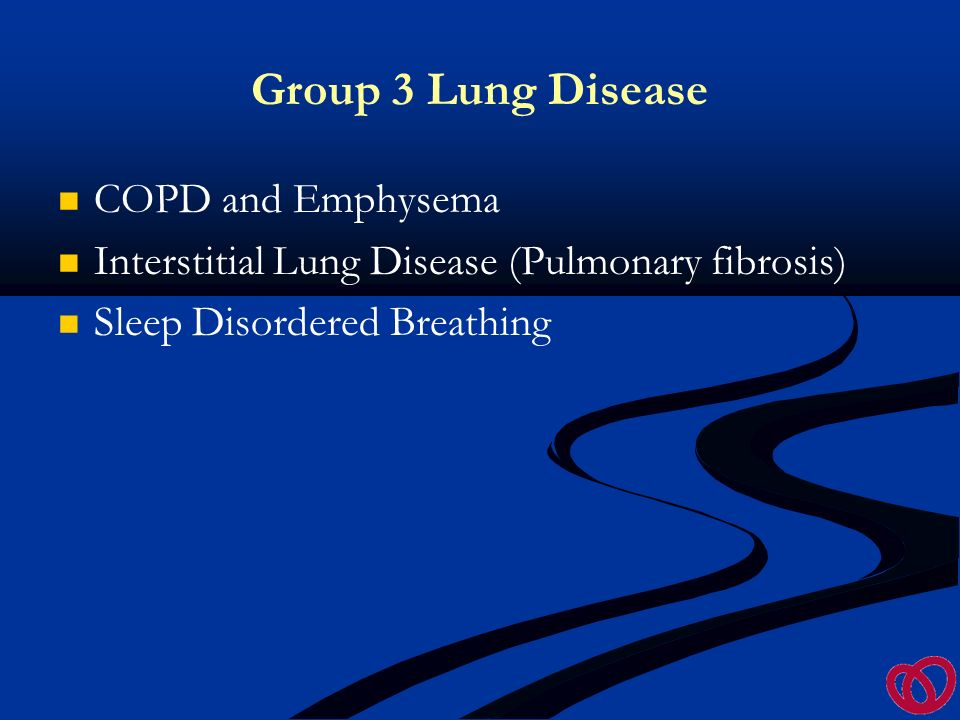 The Disease group bear