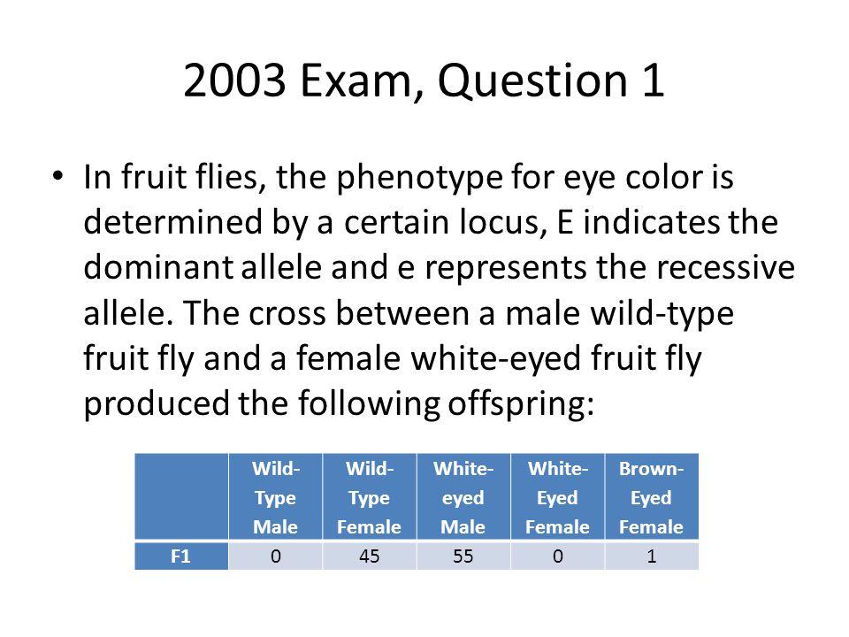 2003 Exam, Question 1