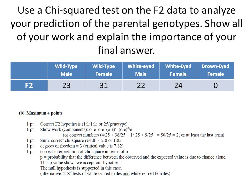Use a Chi-squared test on the F2 data to analyze your prediction of the parental genotypes. Show all of your work and explain the importance of your final answer.