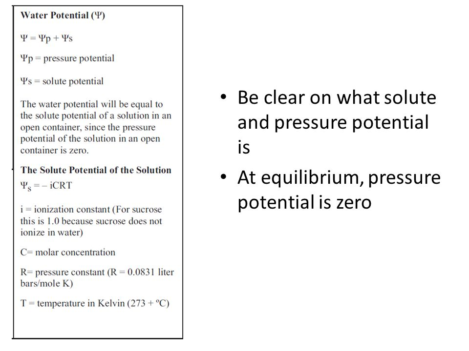 Be clear on what solute and pressure potential is