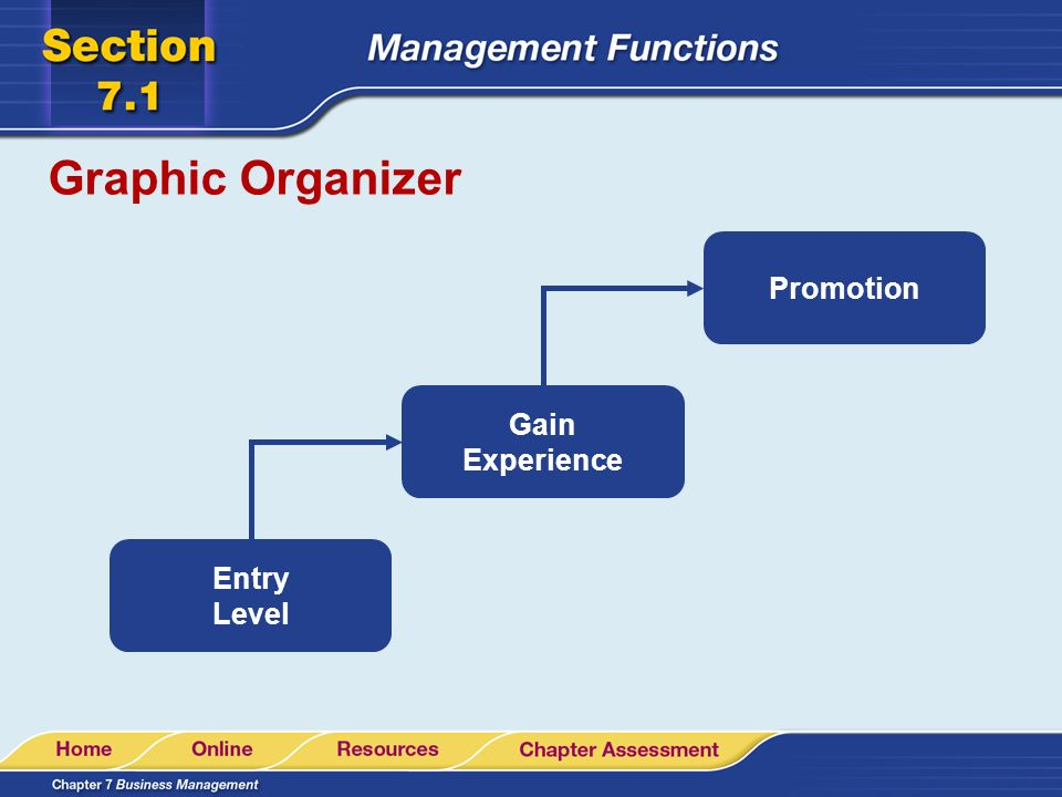 Graphic Organizer Promotion Gain Experience Entry Level